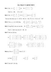bai_tap_ma_tran_va_dinh_thuc_4507.pdf