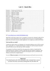 Lab batch - Batch Files.doc
