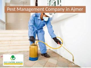 Pest Management Company in Ajmer.pptx