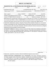 minuta_automotor.pdf
