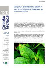 CT120-ManchaAlvo-OL.pdf